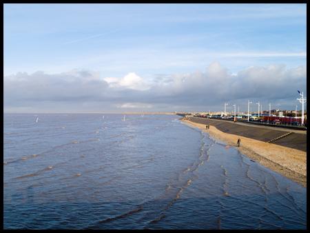 beachscape.jpg