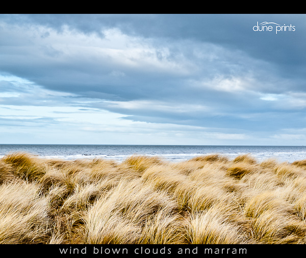 wind blown clouds and marram