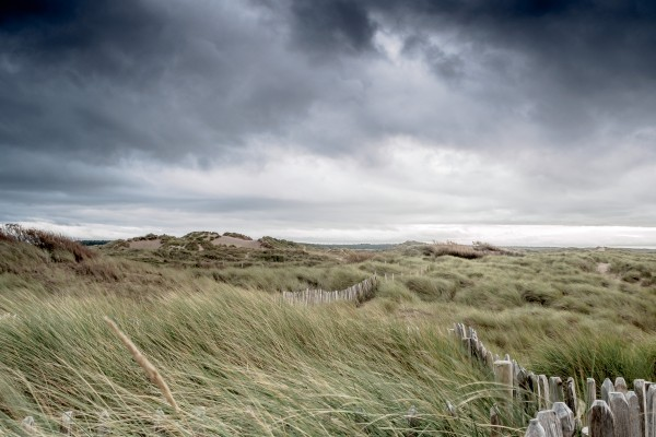 Fence in the Marram